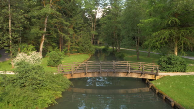 AERIAL of a bridge across a beautiful river in the park