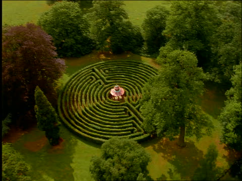 vidéos et rushes de aerial of hedge maze at woburn abbey / woburn park, bedfordshire, england - labyrinthe