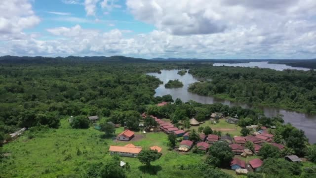 stockshots of land belonging to the indigenous group arara on the edge of the iriri river in brazil's northern state of para - para state stock videos & royalty-free footage