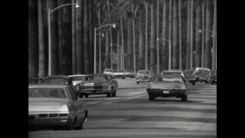 gv of palm tree-lined road in los angeles; 1970 - sunset boulevard los angeles stock videos & royalty-free footage