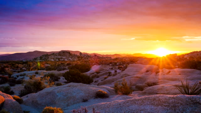 tl of sunrise at joshua tree national park - joshua tree national park stock videos & royalty-free footage
