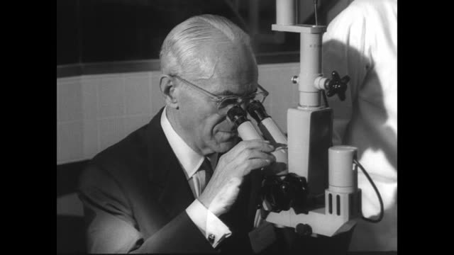 ext of the jules stein eye institute at ucla campus on the occasion of its dedication / cu sign reading 'jules stein eye institute inaugural program'... - plakette stock-videos und b-roll-filmmaterial