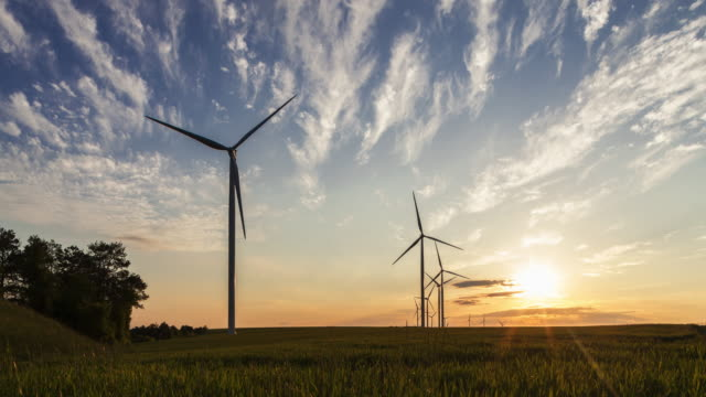 vidéos et rushes de tl of wind farm in sunset - vert