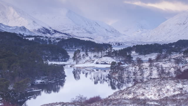 zo tl of winter at glen affric in the scottish highlands, uk. - schottisches hochland stock-videos und b-roll-filmmaterial