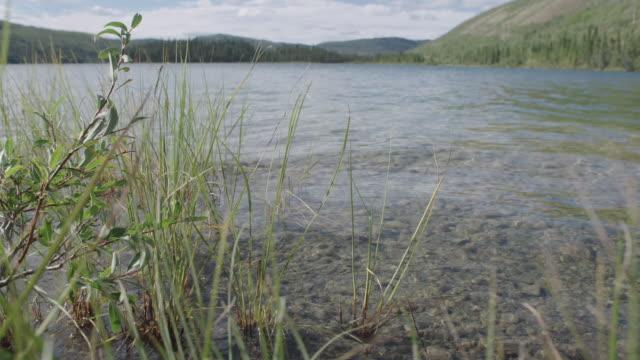 LOW ANGLE of Yukon River