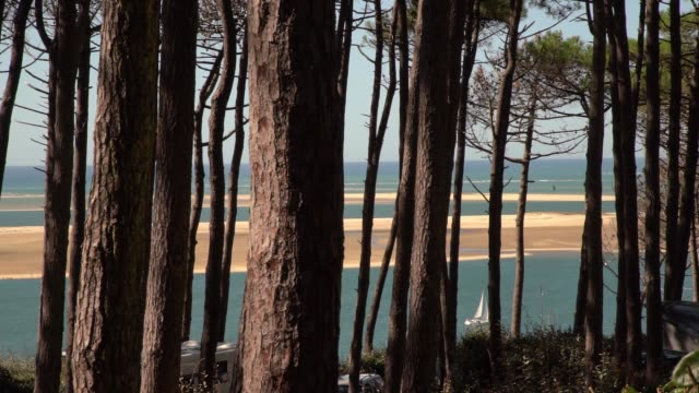 off the dune de pilat the tallest sand dune in europe it is located in la testedebuch in the archachon bay area france 60 km from bordeaux with more... - buch stock videos & royalty-free footage