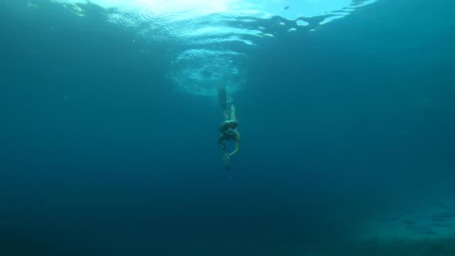 vídeos de stock, filmes e b-roll de fora para encontrar algum peixe eu vou - escapismo