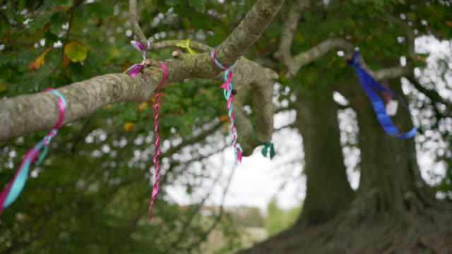 offerings of peace and love blowing in the wind in the famous beach trees at avebury, wiltshire, uk - obelisk stock videos & royalty-free footage