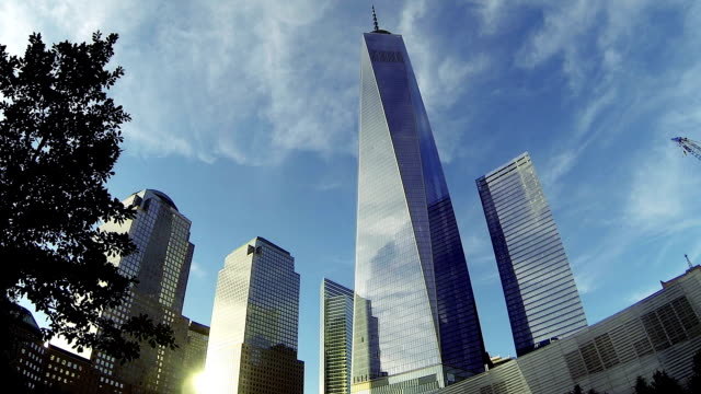 office building and freedom tower in ny downtown district - one world trade center stock videos & royalty-free footage