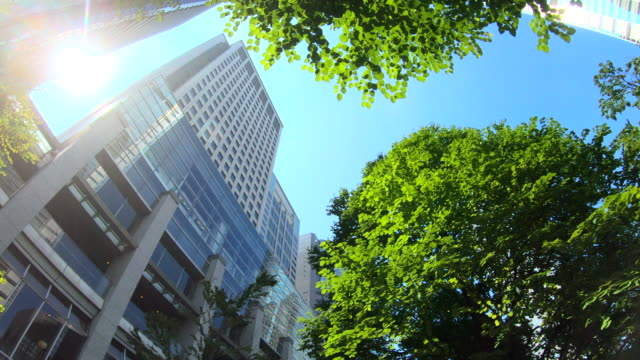 office building from below - conservation stock videos & royalty-free footage