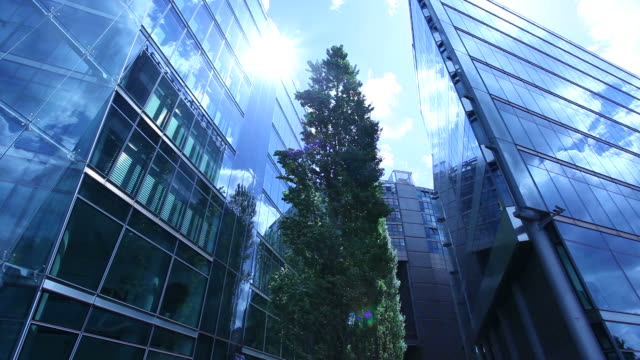 Office building with green tree in foreground (Berlin)