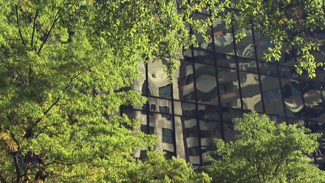 cu, office building with trees in foreground, charlotte, north carolina, usa - charlotte north carolina stock videos & royalty-free footage