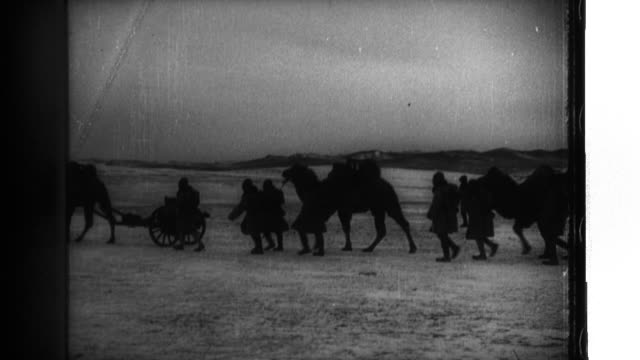 officers and soldiers of the kwantung army use horses, camels, and manpower to transport material and field guns as they battle in snowy terrain in... - manchuria stock videos & royalty-free footage