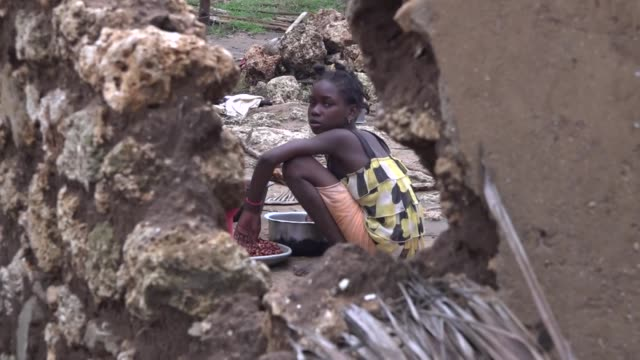 vídeos de stock e filmes b-roll de officials in mozambique have declared a cholera outbreak one week after cyclone winds floods and heavy rains hit the country entire villages have... - moçambique