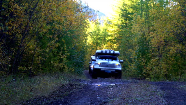 off-road 4x4 car driving on road,russia. - zweig stock-videos und b-roll-filmmaterial
