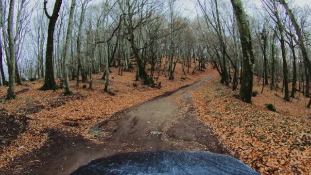4 wd オフロード車の視点: 森の中 - ラツィオ州点の映像素材/bロール