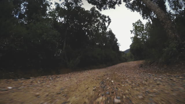 4WD offroad car point of view