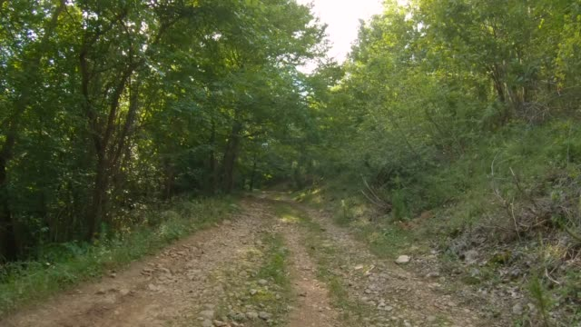 off-road driving through the woods. personal perspective - sports utility vehicle stock videos & royalty-free footage