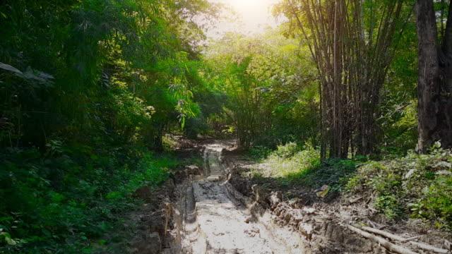 Conduite hors route à travers les bois