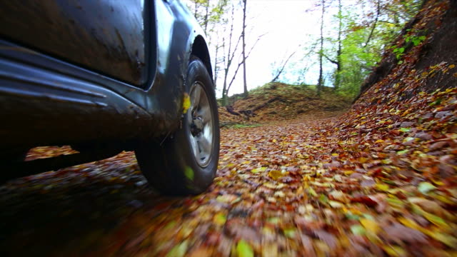 stockvideo's en b-roll-footage met pov off-road vehicle driving through autumn forest - sports utility vehicle