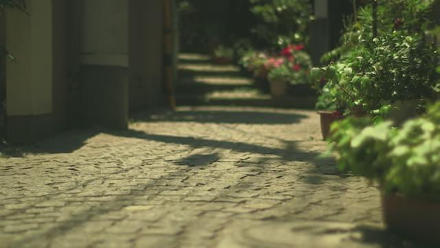 vidéos et rushes de off-street kakurembo-yokocho, kagurazaka, tokyo - étroit