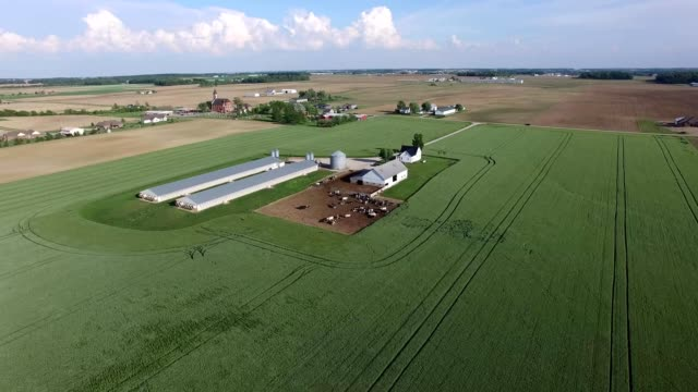 stockvideo's en b-roll-footage met ohio farmland - ohio
