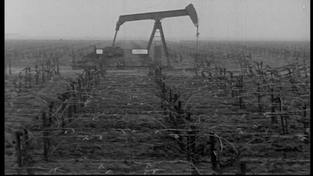 oil derricks and factories amid vast agricultural fields / california migrant farm workers struggled to better their conditions by fighting for the... - lavoratore emigrante video stock e b–roll