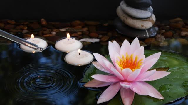 vidéos et rushes de huile de pipette tombant vers le bas dans l'eau près des pierres d'équilibre, de petites bougies et fleur rose de lotus - candlelight