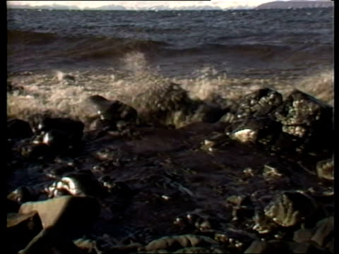 oil in water following exxon valdez oil spill - exxon stock videos & royalty-free footage