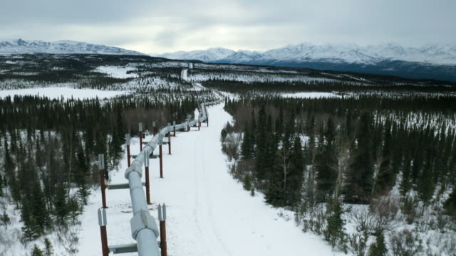 vidéos et rushes de av oil pipeline running through alaskan wilderness - industrie du pétrole