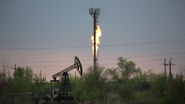 oil pumping jacks also known as nodding donkeys on an oil field near samara russia on tuesday may 14 2019 - fossil fuel stock videos & royalty-free footage