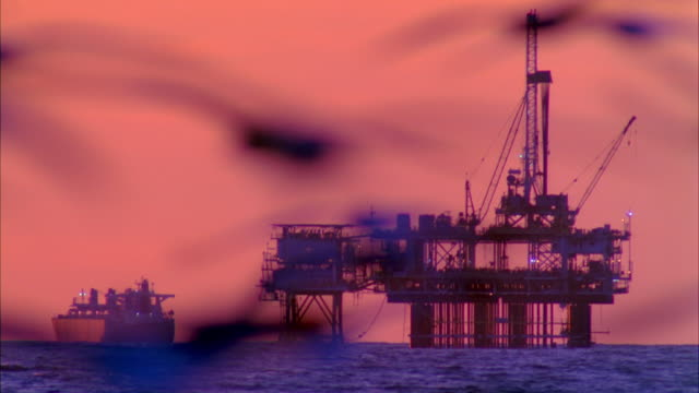 WS Oil rig in sea with seagulls flying in foreground at dusk / Carona del Mar, California, USA