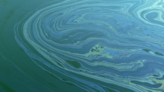oil slick on the sea surface - stained stock videos & royalty-free footage