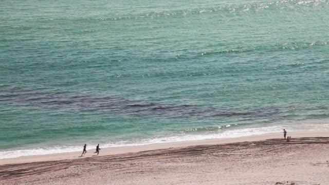 vídeos de stock, filmes e b-roll de derrame de óleo na praia - vazamento de óleo