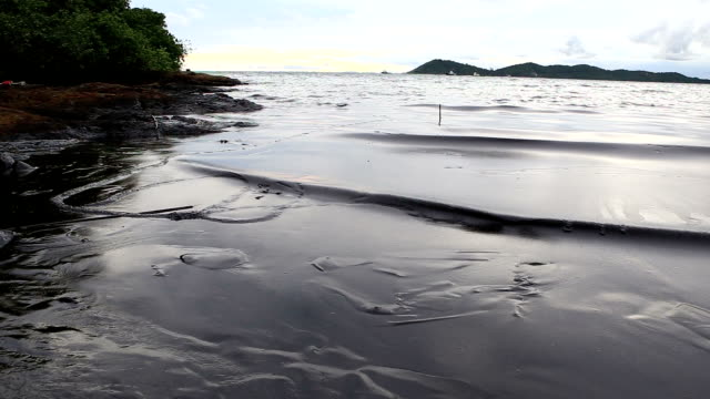 oil spill on gulf - water pollution stock videos & royalty-free footage