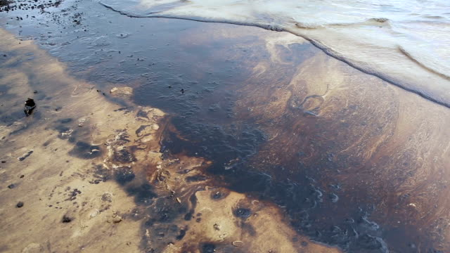 oil spill on gulf - bay of water stock videos & royalty-free footage