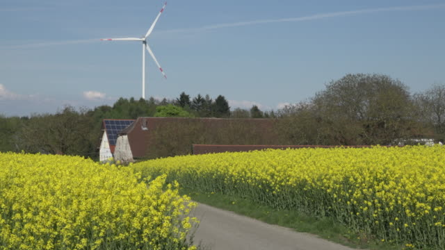 vídeos de stock e filmes b-roll de oilseed rape field with wind turbine and farm - casa de quinta