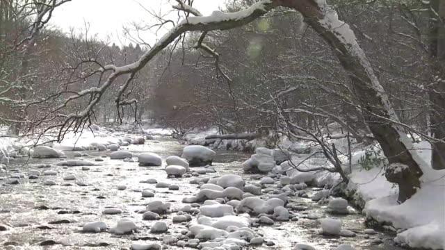 oirase stream in winter, aomori, japan - oirase river stock videos & royalty-free footage