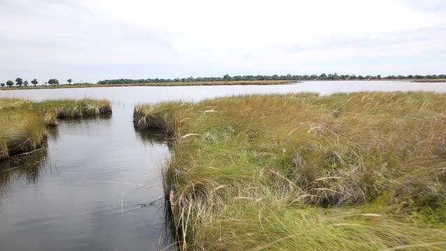vídeos y material grabado en eventos de stock de okavango delta - delta de okavango