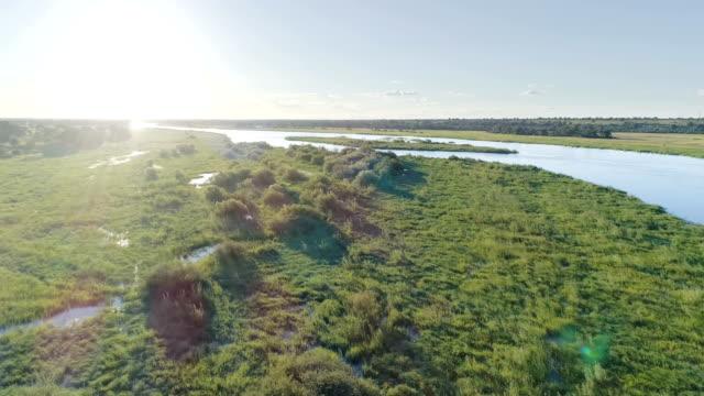 Okavango river. Drone point of view.