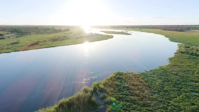 vídeos y material grabado en eventos de stock de río de okavango. drone punto de vista. - delta de okavango