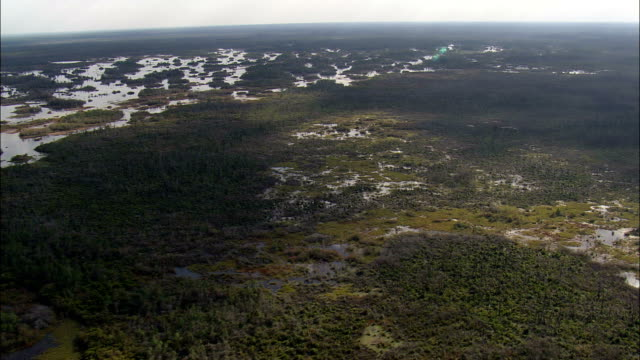 okefenokee national park - aerial view - georgia,  ware county,  united states - okefenokee national wildlife refuge stock videos and b-roll footage