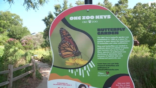 kfor oklahoma city ok us exit gate and information signage displayed at oklahoma city zoo on friday july 3 2020 - western script stock videos & royalty-free footage