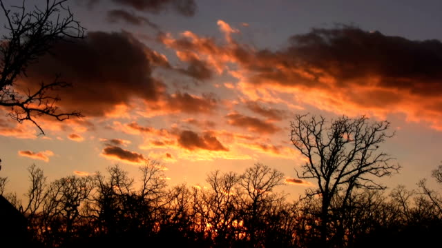 oklahoma sunset - oklahoma stock videos & royalty-free footage