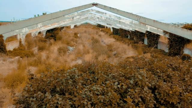 vecchia costruzione architettonica abbandonata sull'erba secca - concrete video stock e b–roll