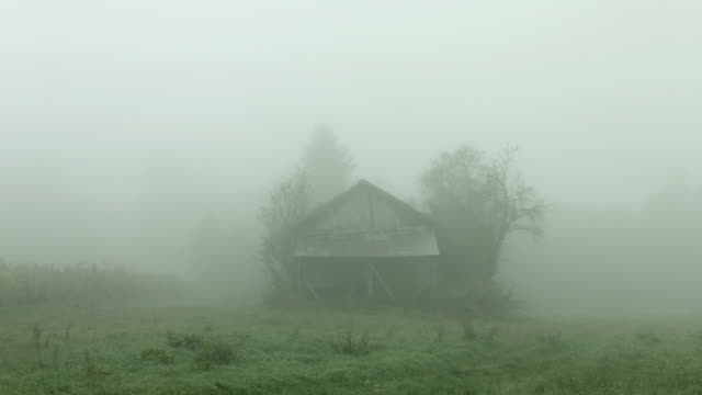 old abandoned cabin. misty autumnal landscape - shack stock videos and b-roll footage