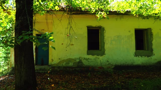 old abandoned house in the forest - rustic stock videos & royalty-free footage