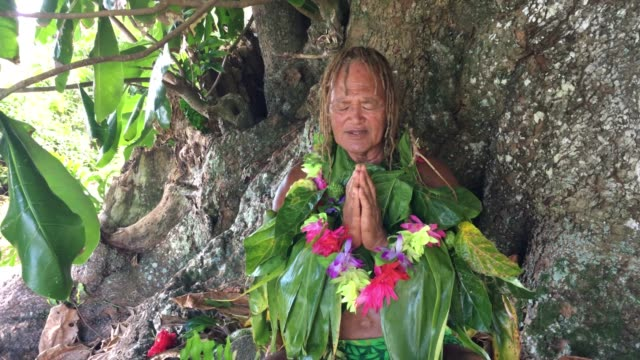 stockvideo's en b-roll-footage met old aged pacific islander man praying under a rain forest tree - polinesische cultuur