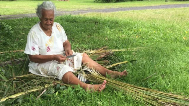 stockvideo's en b-roll-footage met old aged pacific islander woman prepares a broom from a coconut tree leaves - polinesische cultuur