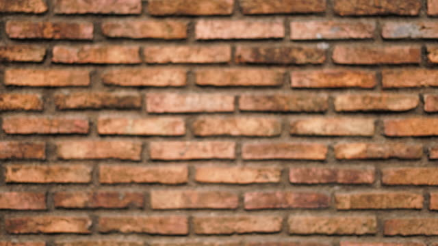 old brick wall background dolly shot - wall building feature stock videos & royalty-free footage